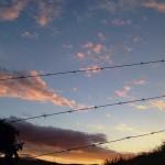 Greyton sunsets